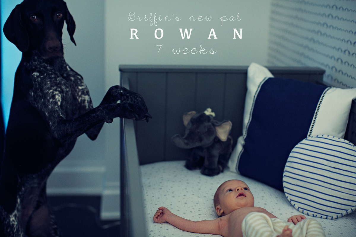 Rowan_7Weeks_Preview_001