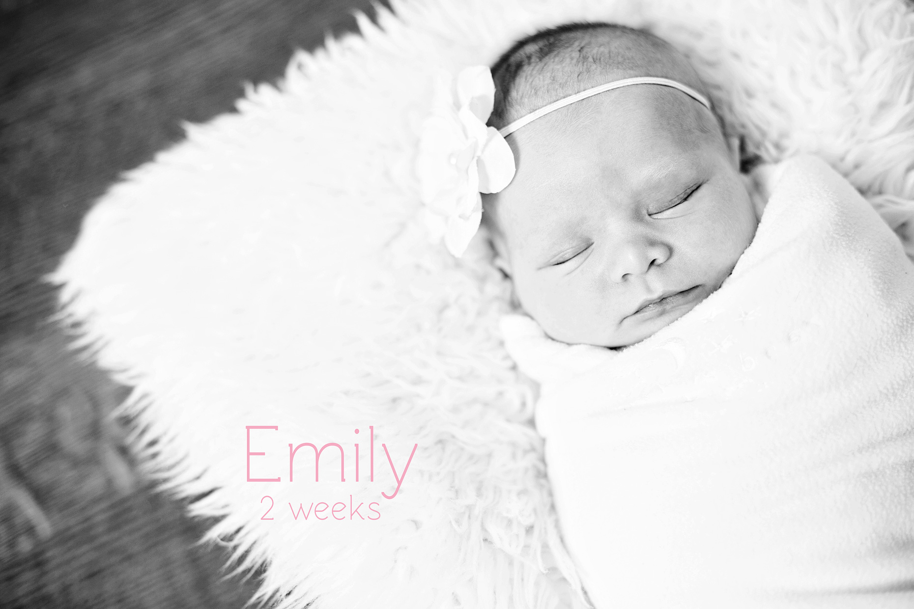 WelcomeEmily_001